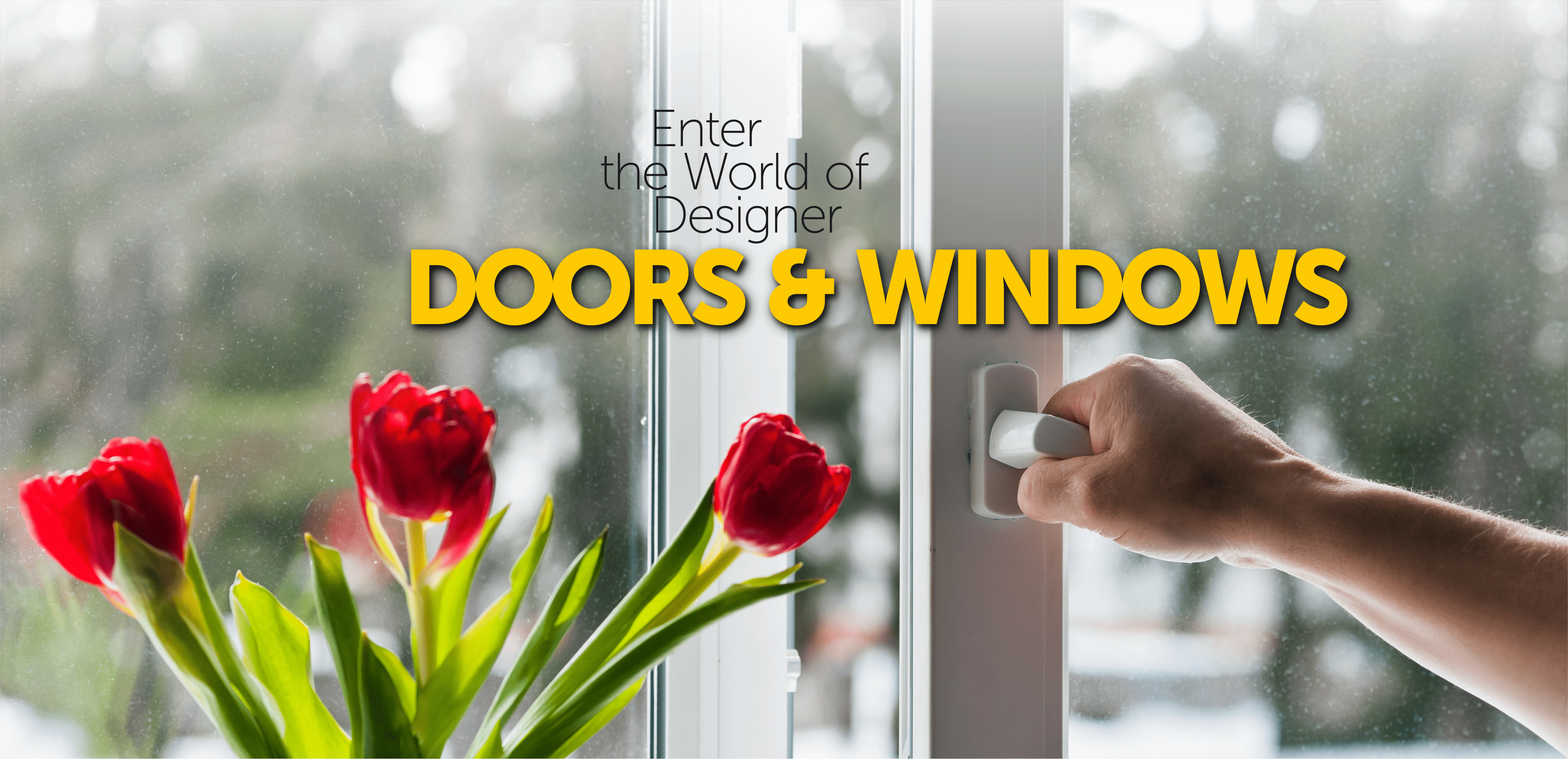 Doors & window
